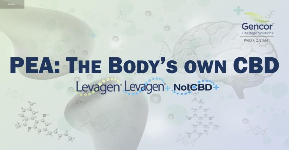 The body's own CBD: Understanding endocannabinoid pathways – webinar