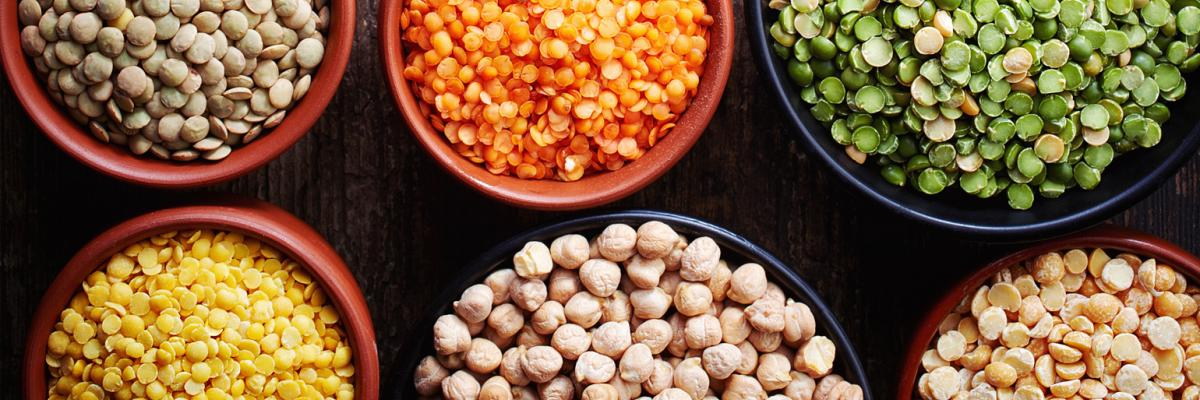 The plant-based protein market — deep dive