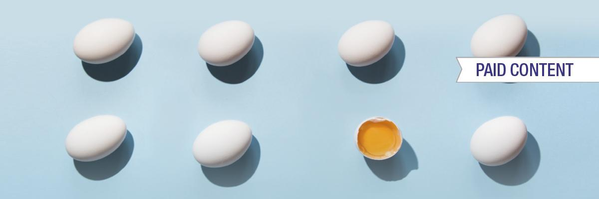 Responsibly sourced water-soluble eggshell membrane – infographic