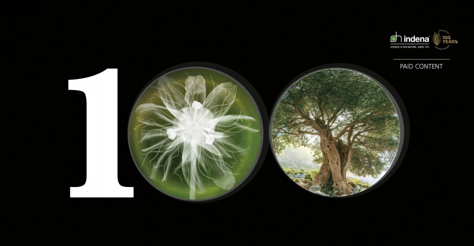 One hundred years of botanical excellence – infographic