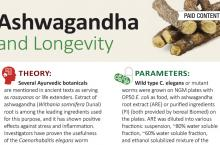 AA Longevity