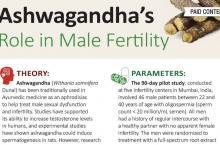 AA Male Testosterone