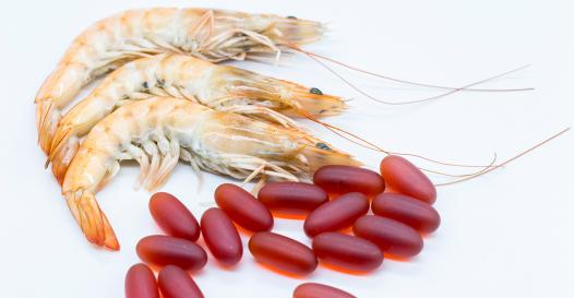 Krill oil research shows benefits to athletes.jpg