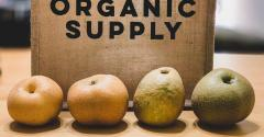 Exploring the state of the organic industry