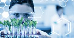Molecular diagnostic tools to authenticate botanical ingredients.jpg