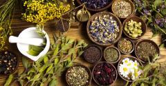Southwest Conference on Botanical Medicine.jpg