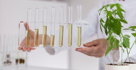 CBD hemp extracts and extraction processes.jpg