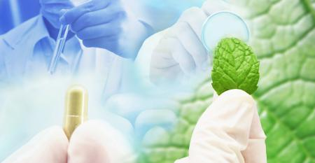 Lab Testing Supplements, Ingredients